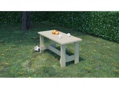 Medinis lauko stalas 2