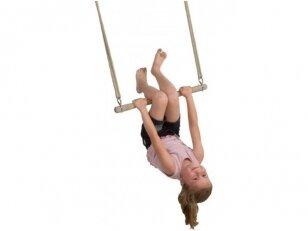 Medinė trapecija